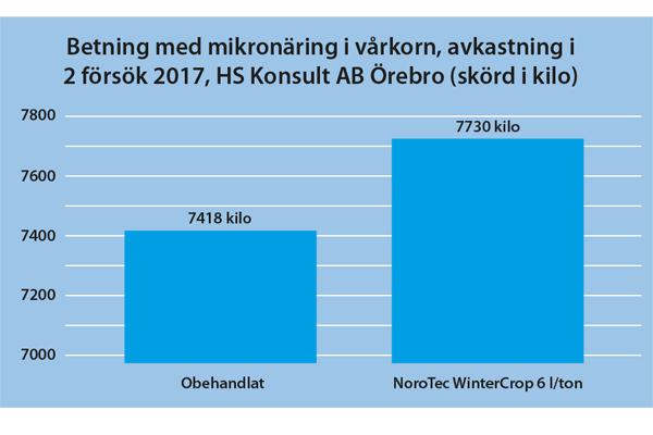 forsoksbilder8_varkorn